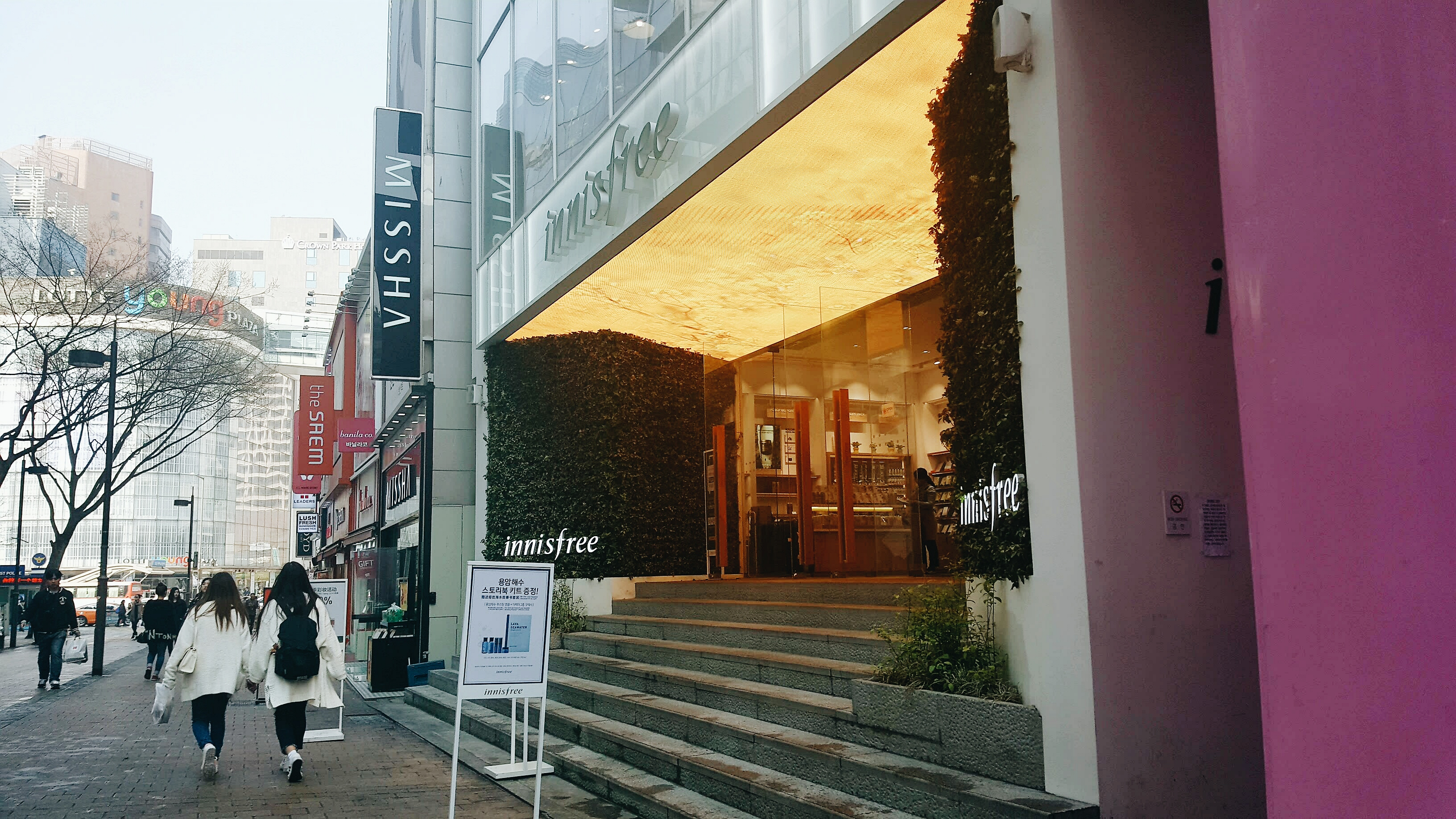 adventures in korea: 이니스프리 그린 카페 innisfree green cafe